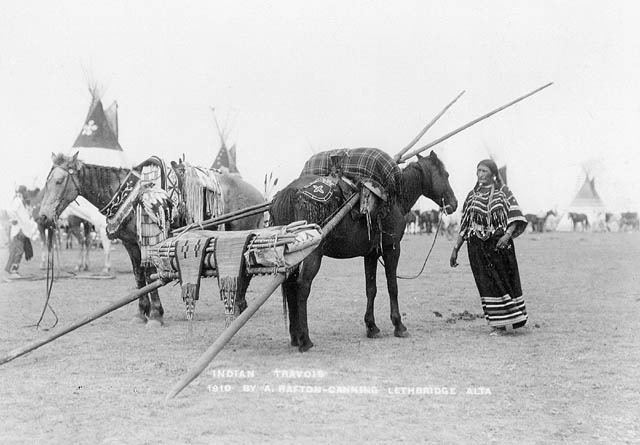 Photograph of a Kainai woman with her horse and travois, taken by A. Rafton Canning, 1910.